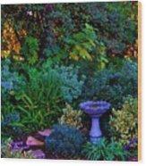 Secret Garden Wood Print by Helen Carson