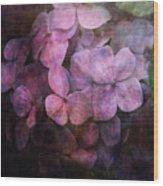 Secret Hydrangea 1538 Idp_2 Wood Print