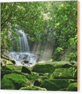 Secret Paradise - Hidden Appalachian Waterfall Wood Print by Matt Tilghman