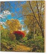 Secret Path At Lafayette Park Landscape Wood Print