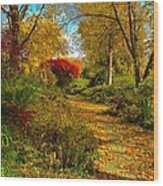 Secret Path Fall Perfection  Wood Print