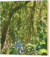 Secret Place By The Water Wood Print
