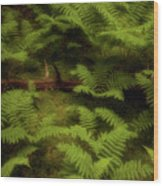 Secret Sanctuary Wood Print