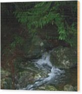 Secret Water Wood Print by Jim Thomson
