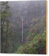 Secret Waterfall Wood Print