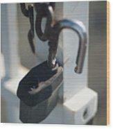 Security Wood Print