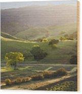 Sedgwick Sunrise Wood Print