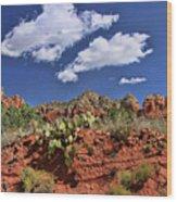 Sedona # 16 - Red Rocks Wood Print