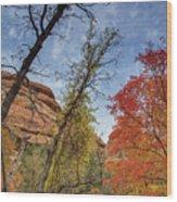 Sedona Fall Colors Wood Print
