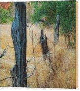 Sedona Fence And Field Wood Print