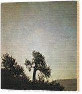 Sedona Landscape Xv Wood Print