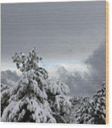 Sedona Skyline In Winter Wood Print