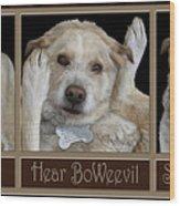 See Boweevil Wood Print
