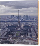 See Paris As Birds Do Wood Print