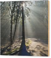 See The Light Wood Print