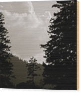 See The Mountain Through The Trees Wood Print by Kimberly Camacho