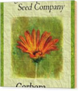 Seed Packet -- Gerbera Daisies Wood Print