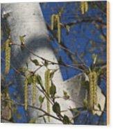 Seeds Wood Print