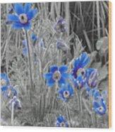 Seeing Blue Wood Print
