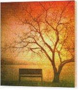 Seeking Shelter Wood Print
