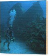 Seeking Sunken Treasure Wood Print