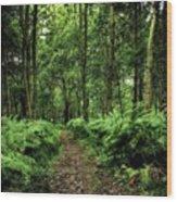 Seeswood, Nuneaton Wood Print