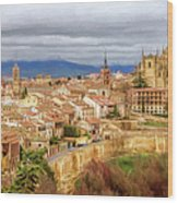 Segovia Cathedral View Wood Print