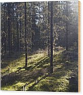 Seitseminen Wood Print