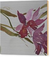 Selby Orchids Wood Print