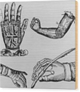 Selection Of 16th Century Artificial Arms & Hands. Wood Print by Dr Jeremy Burgess.