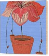 Self-seeding Pot Plants Wood Print