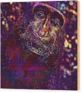 Selfie Monkey Self Portrait  Wood Print