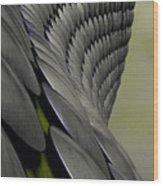 Selfridges Birmingham Wood Print