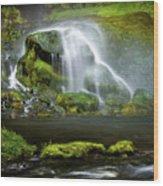 Selja Land Foss Wood Print