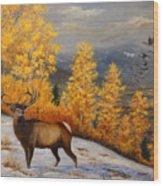 Selkirk Elk Wood Print