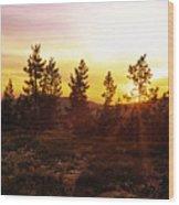 Selway Wilderness Wood Print