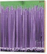 Semiconductor Nanowires, Sem Wood Print