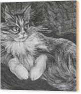 Semona Wood Print