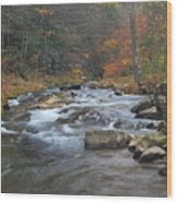 Seneca Creek Autumn Wood Print