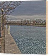 Seneca Falls Waterfront Wood Print