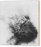 Senescence 4 Wood Print