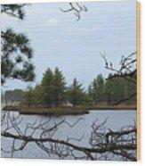 Seney Islands Wood Print