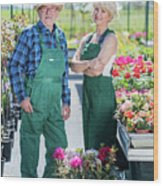 Senior Gardener And Middle-aged Gardener At Work. Wood Print