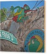 Senor Frog's - Playa Del Carmen Wood Print
