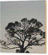 Senset Trees Wood Print