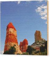 Sensuous Sandstone Wood Print