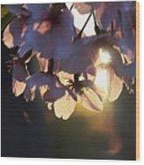 Sentimental Blooming Wood Print