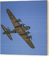 Sentimental Journey In Flight Wood Print