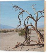Sentinel Of The Dunes Wood Print