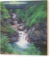 Sentinel Pine Bridge Flume Gorge Wood Print
